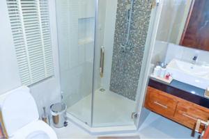 Top rated Lake Buena Vista frameless shower doors