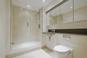 Windermere FL Frameless Shower Doors